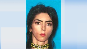 US media have named the shooting suspect as Nasim Aghdam