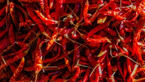 Chilli intensity is measured on the Scoville scale