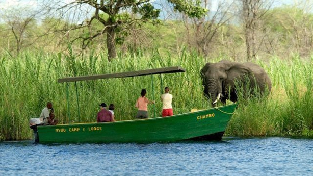 Boat safari at Liwonde National Park (Dana AllenPA)
