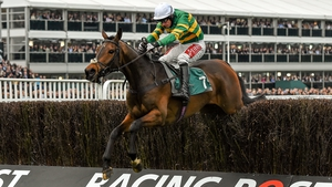 Minella Rocco under Derek O'Connor winning at Cheltenham in 2016
