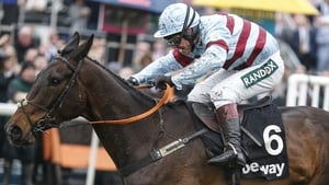 Lalor is the favourite as things stand for Kayley Woollacott
