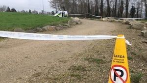 Ioan Artene Bob was found with serious injuries in Sean Walsh Park at 8.30am on Friday 13 April