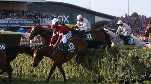 Tiger Roll (13) en route to victory last year