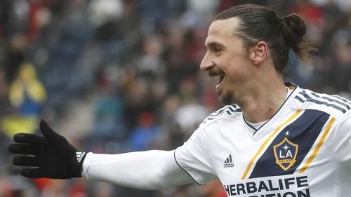 Zlatan Ibrahimovic celebrates his winner