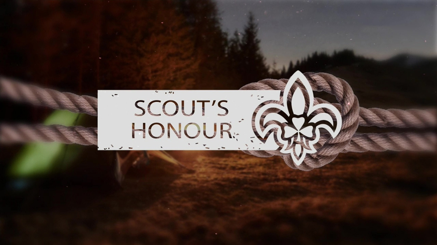 Investigation into Scouting Ireland