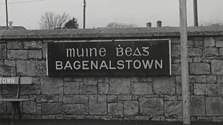 Muine Bheag - Wikipedia