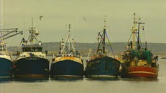 Trawlers moored at Cill Rónáin harbour (1998)