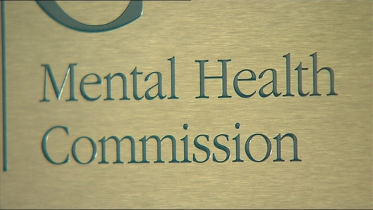 Review critical of community mental health services