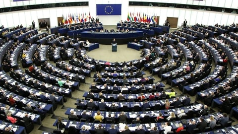European Parliamentary Elections | The Week in Politics