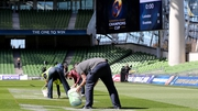 The Aviva Stadium pitch is manicured ahead of kick-off
