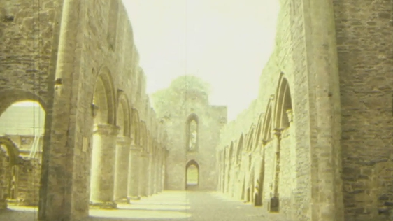 Boyle Abbey, Roscommon