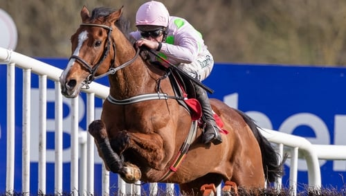 Will Faugheen claim glory in the Stayers' Hurdle on day three?