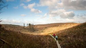 Exploring Ireland's Hidden Heartlands at Cavan Burren Park. Photo: Fáilte Ireland
