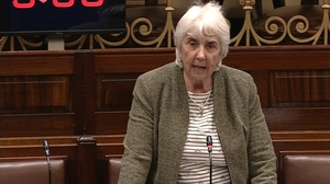 Ind TD Maureen O'Sullivan called for restrictions on sex offenders travelling abroad