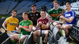 Conor McGinley of Antrim, Damien Healy of Meath, Brian Tracey of Carlow, Eoin Price of Westmeath, Padraig Boyle of Kerry and Ross King of Laois