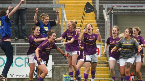 Wexford rejoice at the final whistle