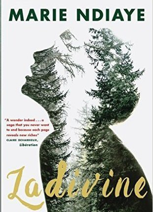 "International Dublin Literary Award shortlist - ""Ladivine"" by Marie Ndiaye"