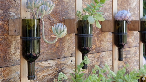 Wine bottles upcycling as flower pots. Photo: iStock