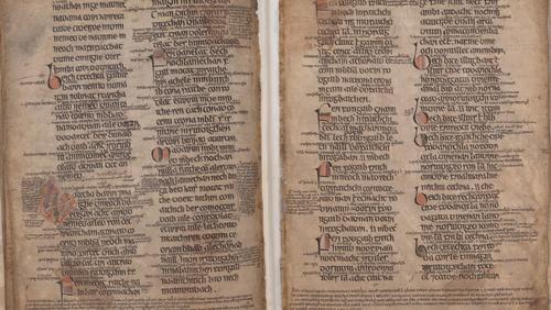 A manuscript detailing bee-keeping laws