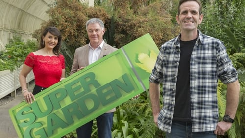 Super Garden brings the Aussie outback to a Tipperary garden