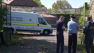 Two 14-year-old boys deny murdering Ana Kriégel in a derelict house in Lucan last year