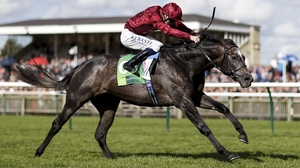 John Gosden reports Roaring Lion to be in excellent shape
