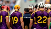 Davy Fitzgerald bringing belief to Wexford's land of hope