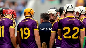 Davy Fitzgerald has placed himself at the centre of the Wexford hurling universe
