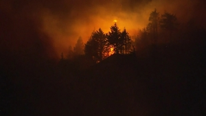 The fire burned more than 48,000 acres of forest land