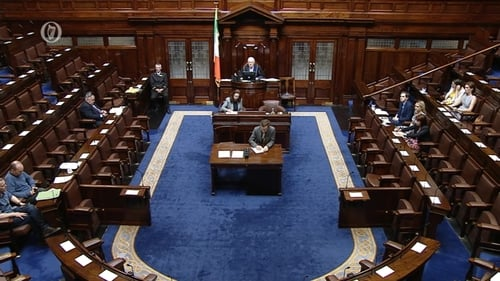 Remarks on the referendum result are continuing in the Dáil
