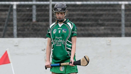 Niamh Mulcahy scored two late points for Limerick