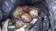 Six One News (Web): Long-term illegal dumping uncovered at Donegal facility