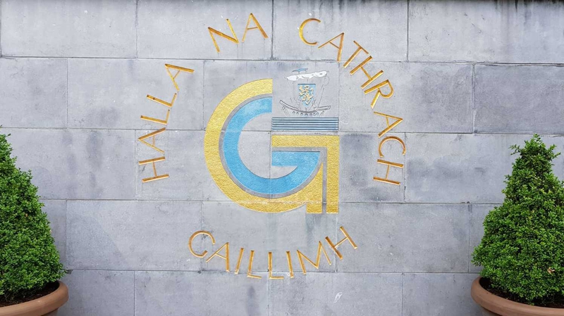 Galway councillor apologises over racist language