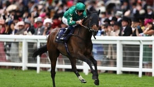 Aljazzi could go in the Coolmore Fastnet Rock Matron Stakes