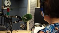Folúntas: Clár Reachtaire i nDoirí Beaga