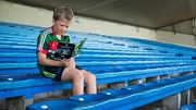 Young Mayo fan John O'Neill takes a look at the programme in the stands in Thurles