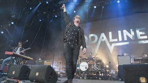 Kodaline were among several acts who played The Isle of Wight Festival over the weekend