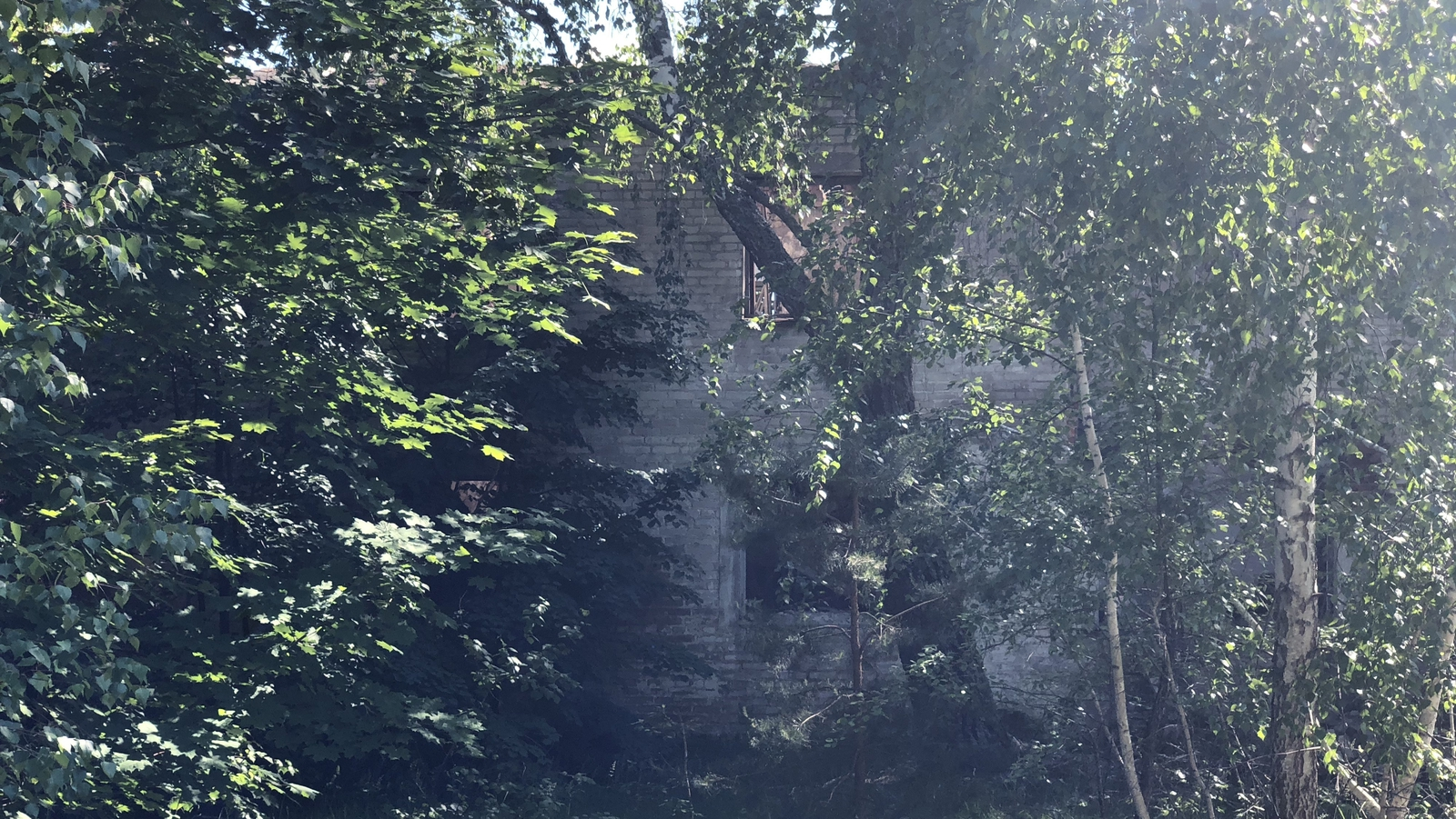 Image - An abandoned house buried in the forest that has grown up where Bartholomevka town once stood