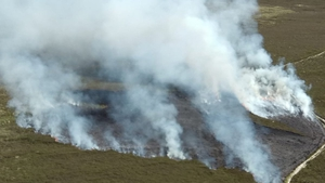 Dublin Fire Brigade says three days of rain are needed to reduce the threat of forest fires