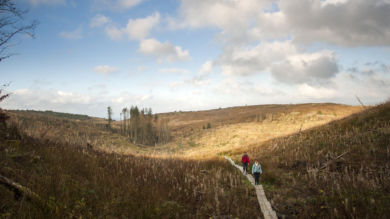 Image - Experience the magical terrain of Ireland's Hidden Heartlands