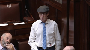 Kerry TD Michael Healy-Rae was accused of delaying the bill
