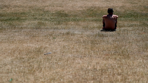 Dried grass in Phoenix Park during a heatwave in summer 2018 - the report ranks Ireland last out of 15 EU countries for progress on its environmental goals
