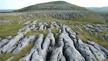 Naturefile - The Burren