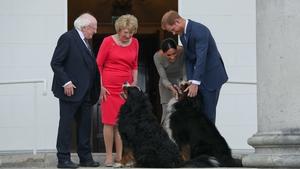 Prince Harry and Meghan Markle meet the President's dogs, Bród and Síoda
