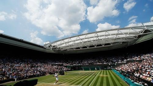 Tennis review finds no corruption problem