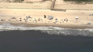 The incidents happened on Fire Island, east of New York City