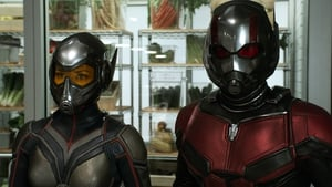 Evangeline Lily and Paul Rudd as The Wasp and Ant-Man
