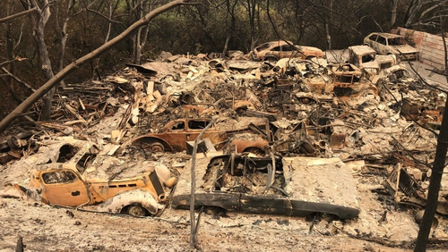 Over 95,000 acres of drought-parched vegetation have been destroyed in the fires