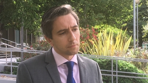 Simon Harris said he will look specifically at two areas of the legislation