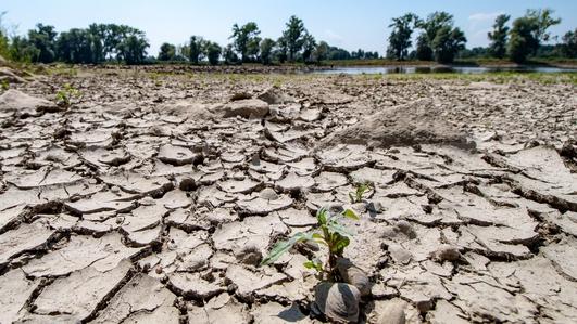 Kenya Climate Report